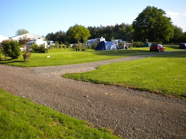 Beautiful at Deanwood campsite in the FOrest of Dean
