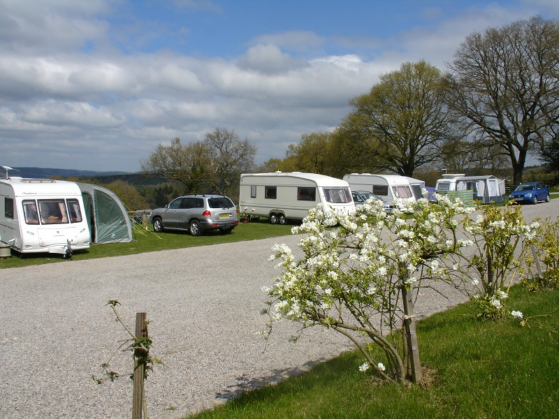 Brilliant Deanwood Caravan Site Forest Of Dean